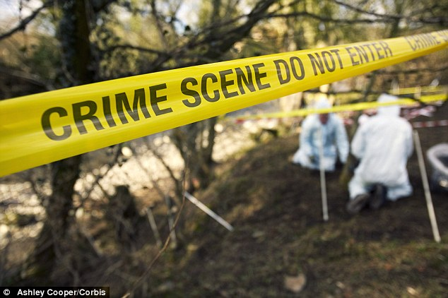 DNAtesting for crime scene investigations will soon