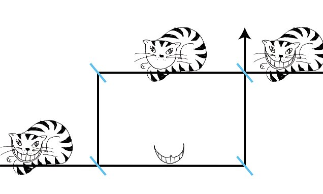 Mystery of the 'Cheshire Cat' of quantum physics solved