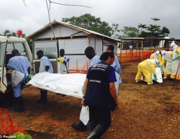 Outbreak: Volunteers carry bodies to a van in a medical centre for Ebola patients in Kailahun, Sierra Leone