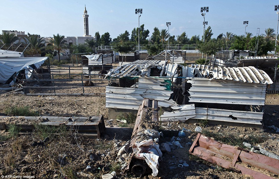 Devastation: A general view of the animal cages at the zoo, twisted and ripped from Israeli bombardment