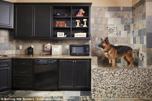 chip kitchen cabinets best flooring inside dog's homes that come fitted with everything a ...