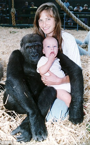 Tansy Aspinall aged 9-months with her mother Louise Aspinall and one of the zoo's gorillas