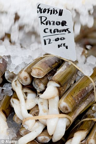 Popular: The illegal shellfish are quickly transported to Glasgow, where they are exported to the lucrative Asian market via Singapore. File image