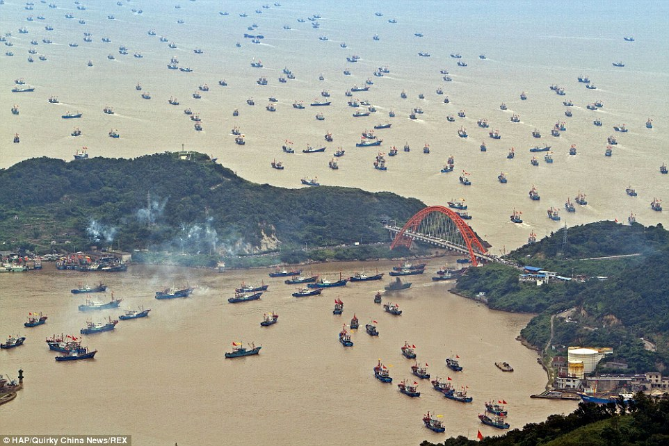 Right, plaice, right time: These incredible images of boats setting out from a harbour in  Zhejiang Province, show just why China harvests more fish than any other country