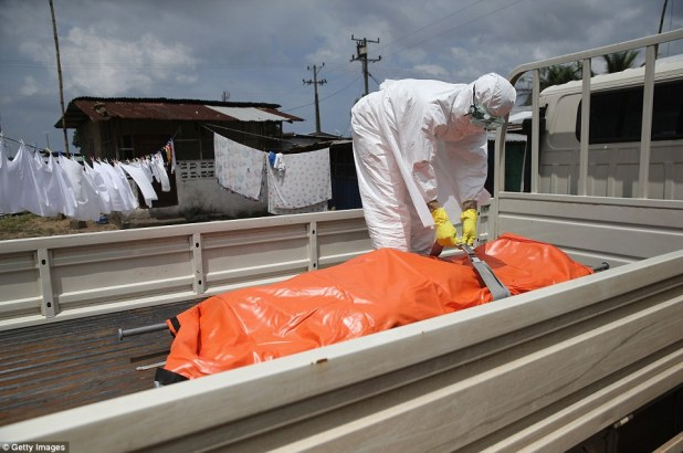 Securing the body: A member of an Ebola burial team straps down the body of Ms Nagbe, before taking it for incineration on Saturday