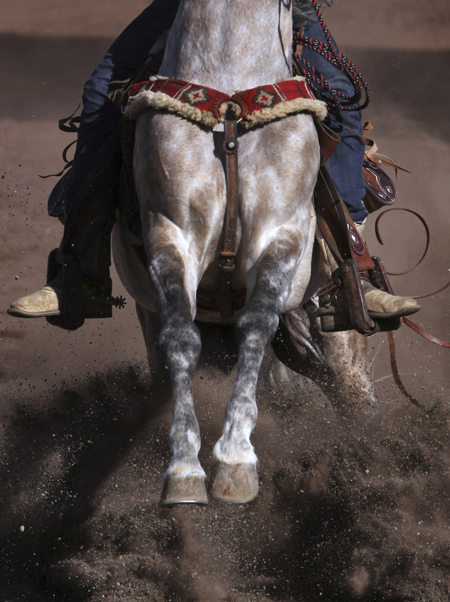 Cowboys And Their Horses