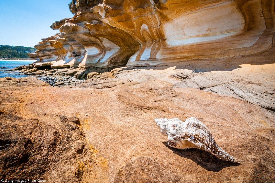 Visitors can witness stunning painted cliffs on Maria Island, a mountainous island off the east coast of Tasmania