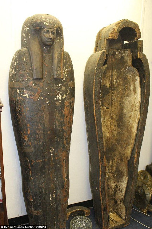 New Mummy Found Egypt