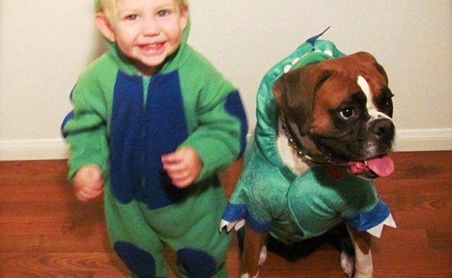 Boy And His Pet Dog Coordinate Their Halloween Costumes