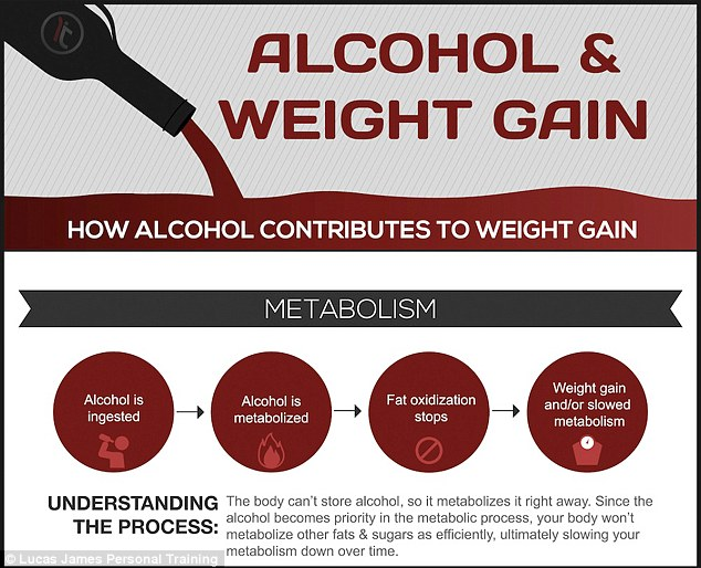 how alcohol contributes to weight gain and slows down your metabolism