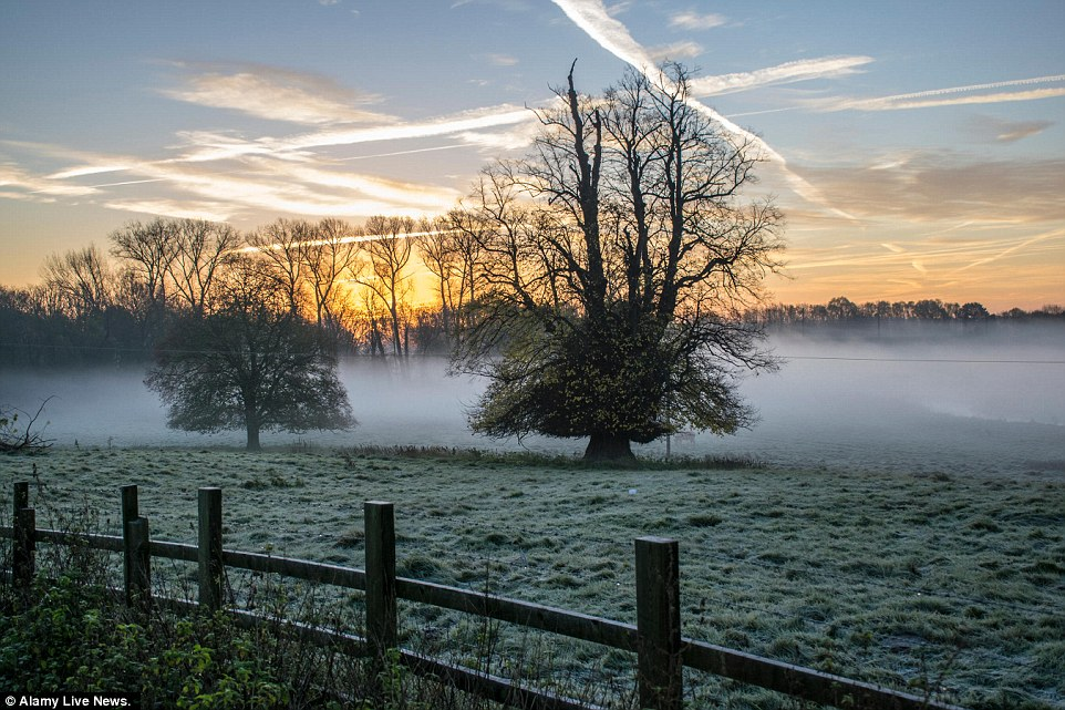 Frosty Fall Leaves Wallpaper Uk Weather Sees Britain Covered In Icy Conditions And