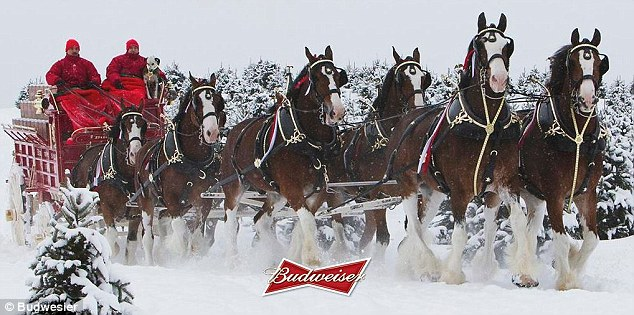 Budweiser Focuses On Younger Audience As Half Of Under 28s