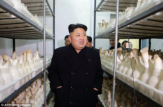 Stacks on stacks on stacks: Kim keeps his hands firmly in his pockets as he passes the mushroms
