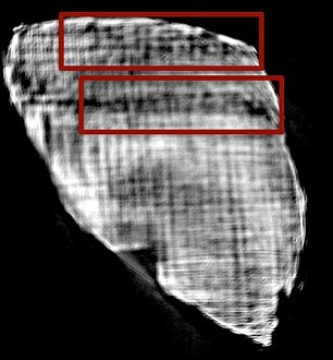 On one fragment (right), researchers spotted words that could be 'would fall', 'would say', and 'to move'