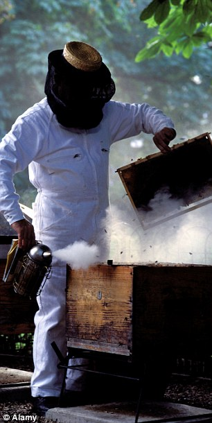 Hives and beekeeping suits are thought to have been funded by the police force