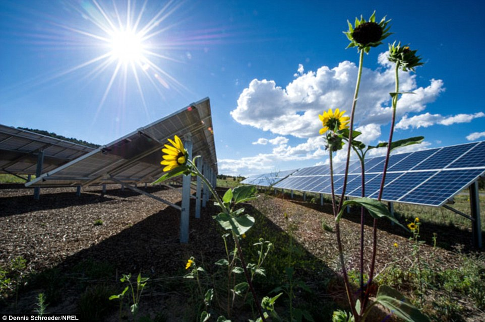 Photovoltaic Panel Converts Sunlight Into Electricity