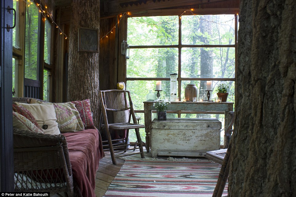 Airbnb luxury treehouse in Atlanta perches among 150yearold pines  Daily Mail Online