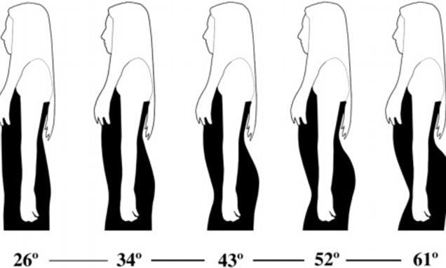 Men like women with CURVED SPINES as they are better at