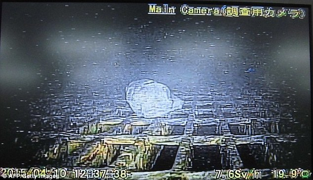 The photographs were captured as part of the robot's mission to inspect melted fuel in one of the reactors