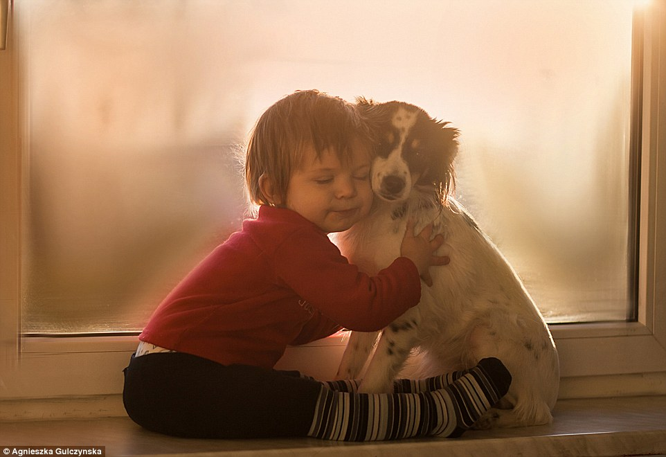 Cuddle time: The toddler cuddles one of his dogs in front of a windowsill