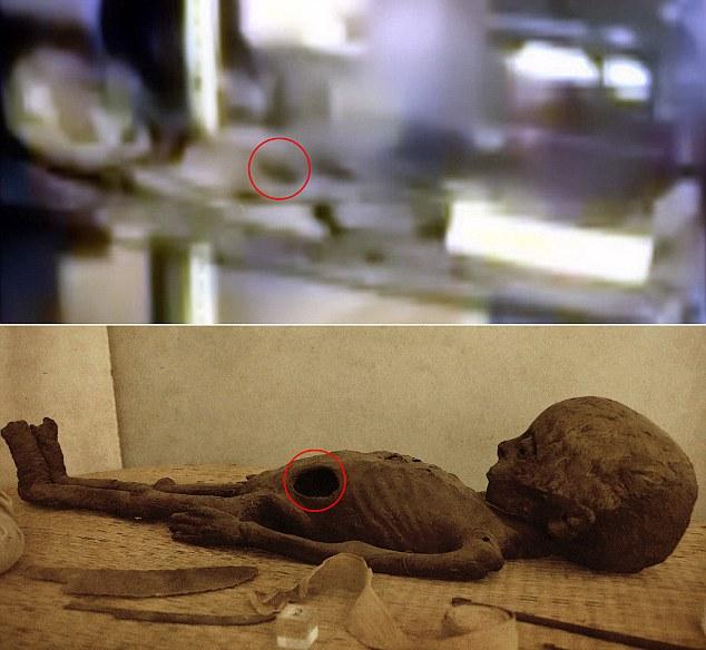 Muchos han comparado las imágenes a las fotos anteriores de momias de la Smithsonian. En la foto, una momia romana niño (parte inferior) con la apertura de anillado en comparación con 'Roswell deslizante' (arriba)
