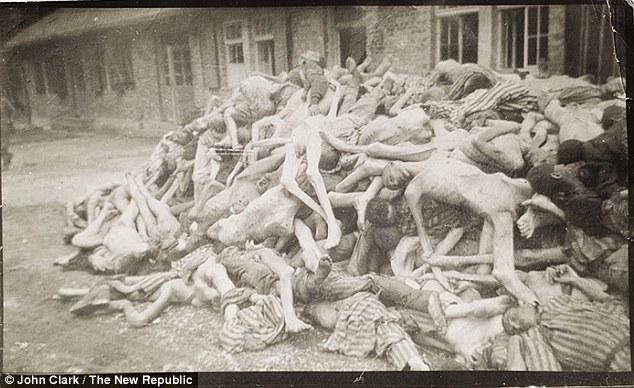 Image result for nazi concentration camps torture