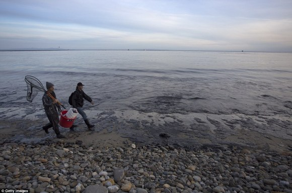 The smell of oil brought county firefighters to the beach earlier in the day to discover the spill
