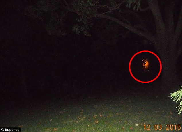 Toowoomba Ghost Chasers believe this picture, taken in March, captured some sort of paranormal activity in the night