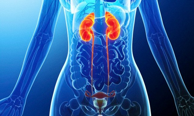 Always getting cystitis? It could be because your urine's ...