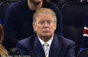 Image result for president trump hair