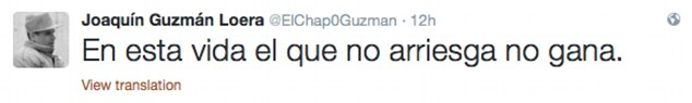 The account became particularly active yesterday, when many believe it was Guzman himself sending messages such as 'In this life, he who risks nothing cannot win'