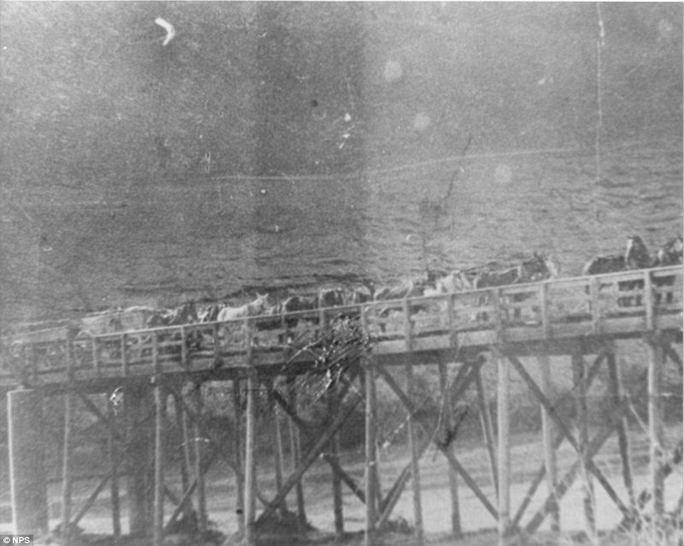 Bridge over the Virgin River near St Thomas, Nevada, which acted as a crossing for cattle. Within years, only boats could cross