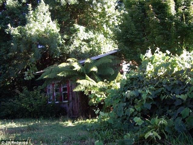 A casa levou oito anos para construir, durante os quais ela vivia em uma cabana casca menor com um chão de terra na propriedade (foto)