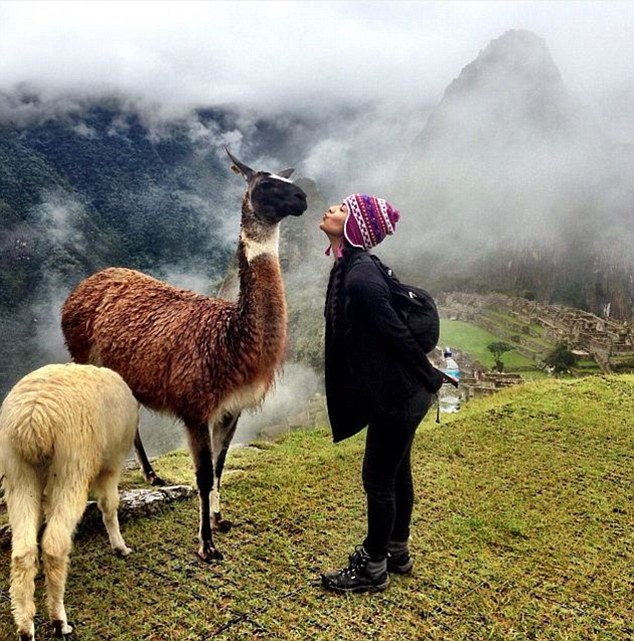 Miss Moreno, pictured with a Llama on the Machu Picchu, has set up a charity to help exotic animals