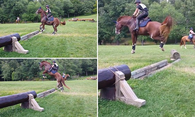 Horse Completely Overestimates Novice Fence And Jumps HIGH