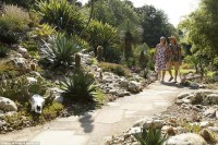 Britain's most tropical garden owners spend months ...