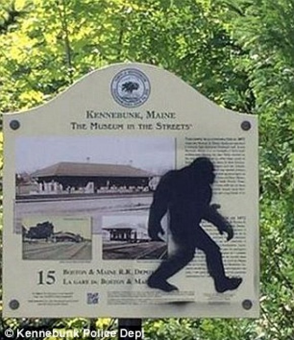 Police say they found the man behind Sasquatch graffiti (left) that had been appearing in the coastal town of Kennebunk, Maine