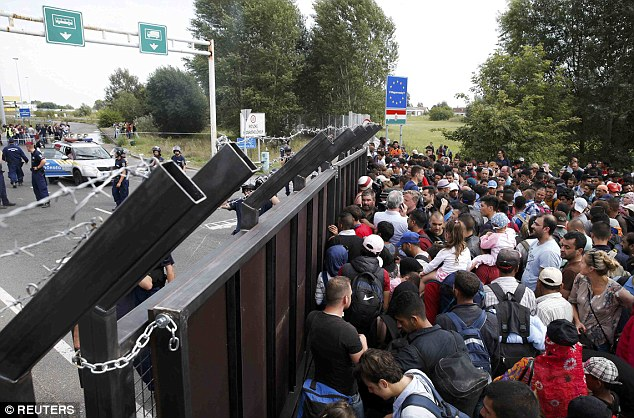 Blocked: Syrian refugees stand in front of a barrier stopping them entering Hungary from Serbia