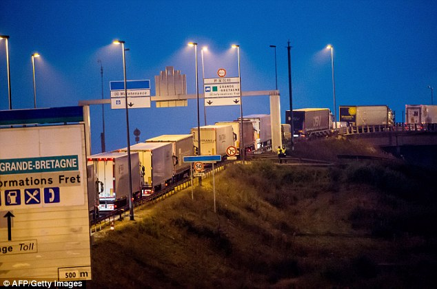Delays: A queue of lorries could be seen this morning being held up outside Cala