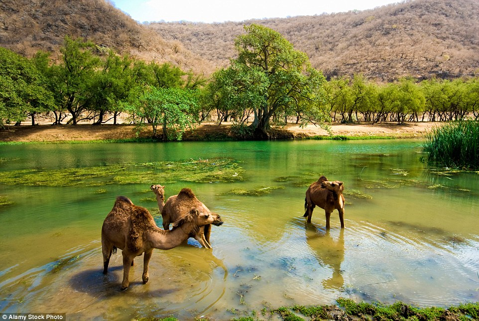 green valley lake muslim The phrygia valley and emre lake in the afyonkarahisar province,  muslim worshippers circle around the kaaba, islam's holiest site, .