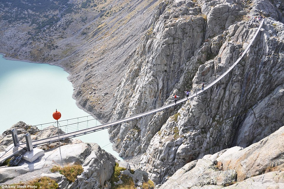 A                              long way to go: Trift Bridge in                              Switzerland is the longest pedestrian-only                              suspension bridge in the Alps at 557 feet                              in length