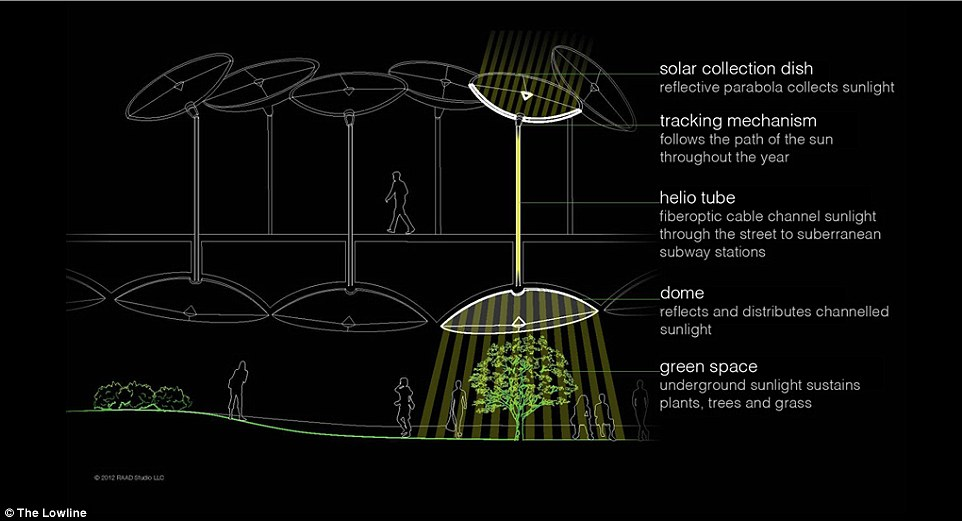 new york city subway diagram 1998 ford contour engine creators of nyc's lowline open exhibit showcasing plants | daily mail online