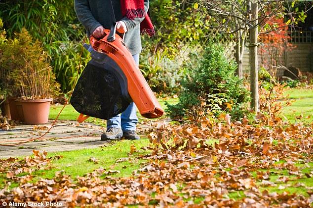 Petrol Driven Leaf Blowers