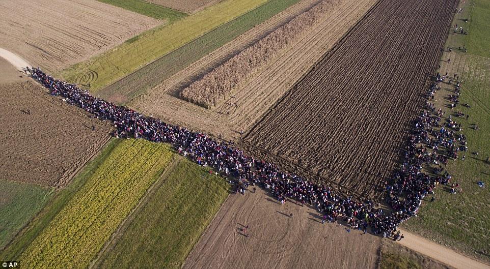 Primer ministro de Solvenia ha quejado de afluencia del país de migrantes provocada por su vecino construcción de Hungría de una barrera