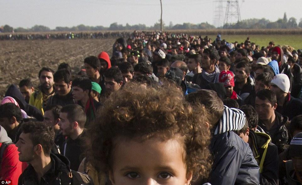 Una chica joven que mira al fotógrafo desde el interior de la columna de los migrantes, que fue fotografiado marchando a través de campos en Eslovenia