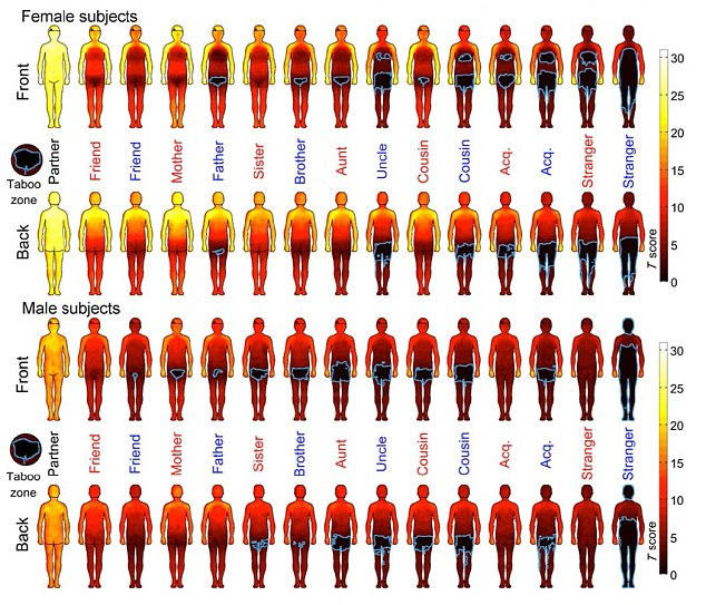 The touchability index shows how comfortable males and females are with being touched on various parts of the body, with yellow being the most comfortable and black the least. It shows the variation by different people ranging from partners, relatives and complete strangers