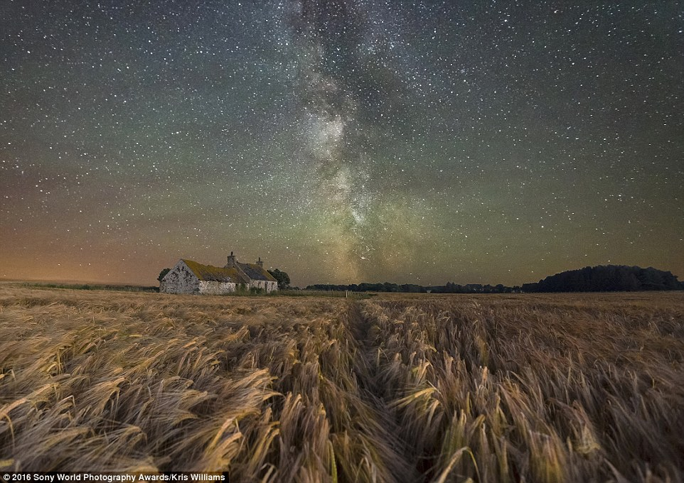 Kris Williams from the UK took an amazing picture of a starry night above a derelict farm surrounded by barley fields on the Isle of Anglesey in Wales