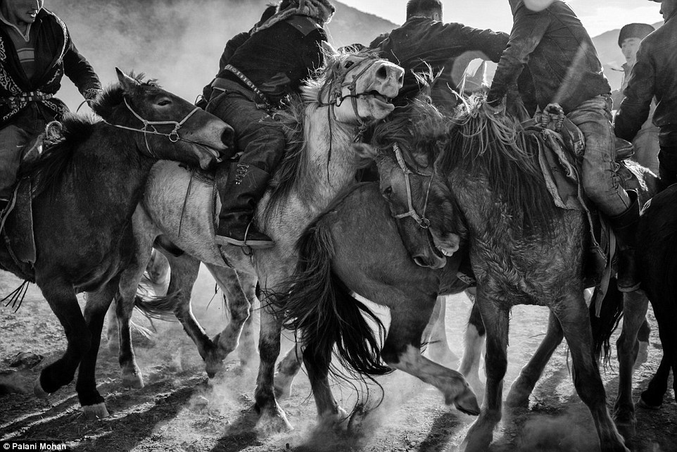 Despite hating the winter Palani Mohan continuously returned to Mongolia to document the lives of the eagle hunters