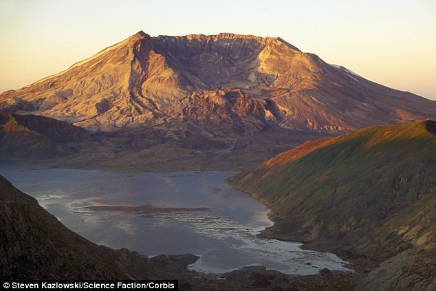 Geologists have discovered the magma chamber beneath Mount St Helens (pictured) is fed by a much larger chamber deeper below the Earth's crust. They said earthquakes around the volcano are a sign of magma pumping from the lower reservoir into the upper one, and this could reveal clues about an impending eruption