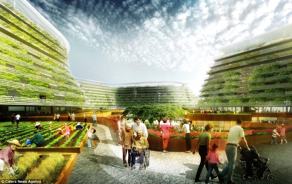 New Garden Design Ideas